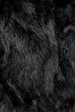 Black fur Stock Photo
