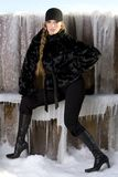 Black fur coat Royalty Free Stock Image