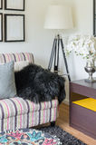 Black fur on colorful sofa with lamp in living room Stock Photography