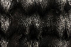 Black Fur Texture Royalty Free Stock Photography