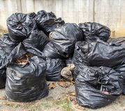Black garbage bag on the floor Stock Photography
