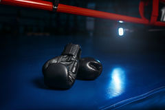Black gloves on the ring, boxing concept, nobody Royalty Free Stock Photo