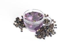 Black goji berry tea. On a white background Stock Photos