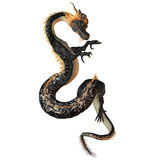 Black and Gold Dragon Stock Images