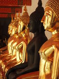 Black among golden Buddhas Royalty Free Stock Image