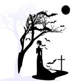 Black gothic dame. Black and white mystical fantasy: black gothic dame Stock Images