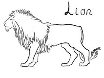 Black graceful Lion contour. Isolated over white. Hand drawing vector illustration Royalty Free Stock Photos