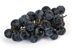 Black grape Stock Image