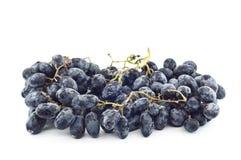 Black grape. Stock Images