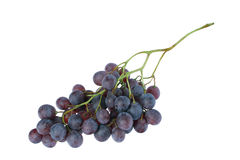 Black grape cluster. Cluster of a black grapes isolated on a white background stock image