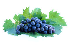 Black grape cluster with leaves Royalty Free Stock Images