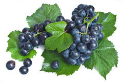 Black grape with leaves Royalty Free Stock Photo