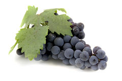 Black Grape On white Stock Photos