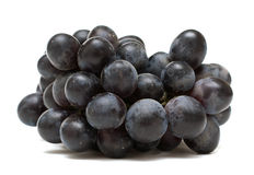 Free Black Grapes Stock Image - 19486621