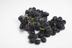 The black grapes Stock Photography