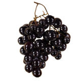 Black grapes Royalty Free Stock Photo