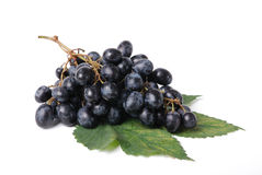 Black Grapes. Bunch of Black Grapes on green leaf isolated on white background Royalty Free Stock Photography
