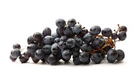Black grapes Stock Image