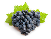 Free Black Grapes Royalty Free Stock Photography - 57951697