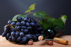 Black grapes, a bottle of wine and a corkscrew. Stock Images