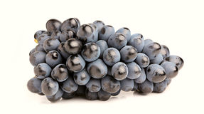 Black grapes, bunch Royalty Free Stock Photo