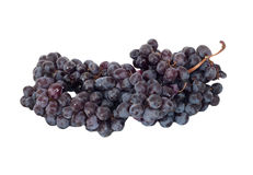 Black grapes cluster Royalty Free Stock Photos