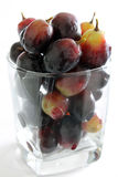 Black Grapes in a Glass. Closeup of Black Grapes in a Glass royalty free stock image