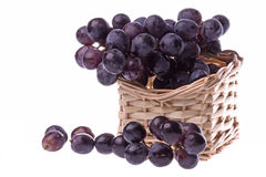 Black Grapes Isolated Royalty Free Stock Photography