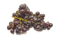Black grapes isolated on white. Background Stock Photo