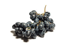Black grapes isolated on the white background Stock Image