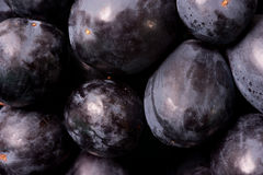 Black grapes macro picture Stock Photo