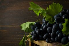 Free Black Grapes With Leaves, Rustic, View From Above Royalty Free Stock Image - 199019796