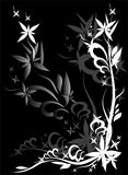 Black graphic flower. Decoration white and grey graphic flower on black frame background Royalty Free Stock Image