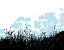 Black grass with light blue poppy flowers. Vector Stock Photography