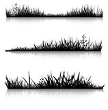 Black grass with reflection Royalty Free Stock Images