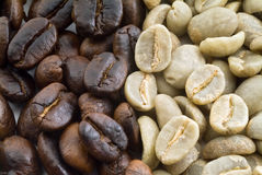 Black and green coffee beans Stock Photography