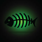 Black and green dead fish Royalty Free Stock Photography
