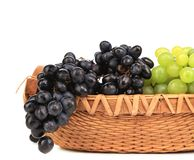 Black and green grapes in basket. Royalty Free Stock Image
