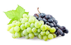 Black and green grapes with leaf. On white background royalty free stock image