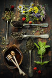 Black, green and herbal tea Royalty Free Stock Images