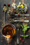 Black, green and herbal tea Stock Image