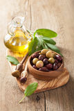 Black and green marinated olives oil sage leaf Royalty Free Stock Images