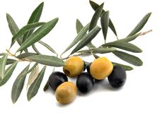 Black and green olives Royalty Free Stock Photos