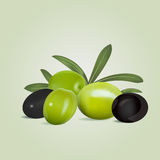 Black and green olives with leaves on olive colored background Stock Images