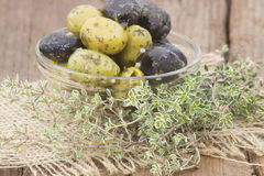Black and green olives Stock Image