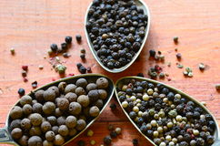 Black, green, red and white pepper and pimento. Royalty Free Stock Images