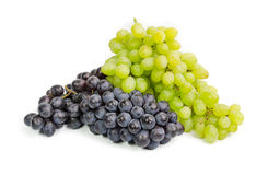 Black and green ripe grapes. Isolated on a white backgropund. Stock Image