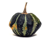 Black and Green Striped Gourd Royalty Free Stock Photo