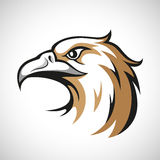 Black, grey and brown eagle head logotype on white Stock Photos