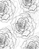 Black,grey rose background. Black,grey rose floral background,pattern for design stock illustration